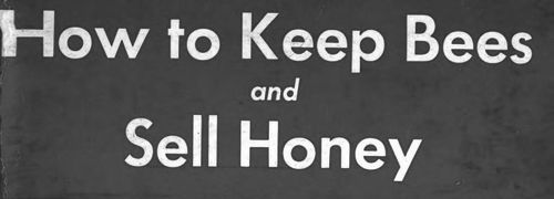 How To Keep Bees And Sell Honey | by Walter T  Kelley