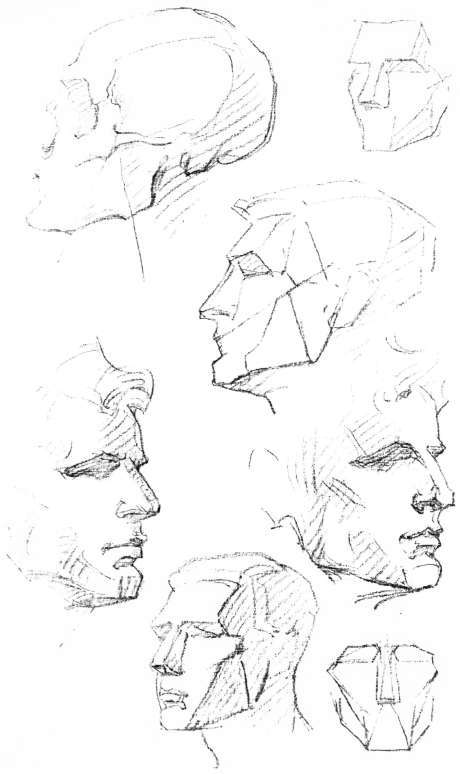 The Head. Planes, The Head - Profile, Planes, The Eye, Comparisons