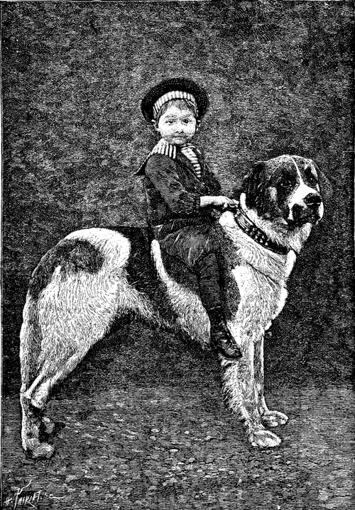 1 a portrait of Cano, a large St. Bernard belonging to Mr. Gaston Leonnard.