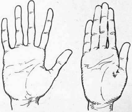 Care Of The Hands. Exercises which Improve the Hands