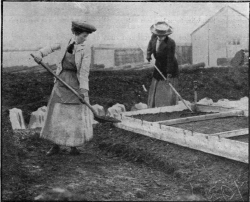 2 French Gardening For Women Continued