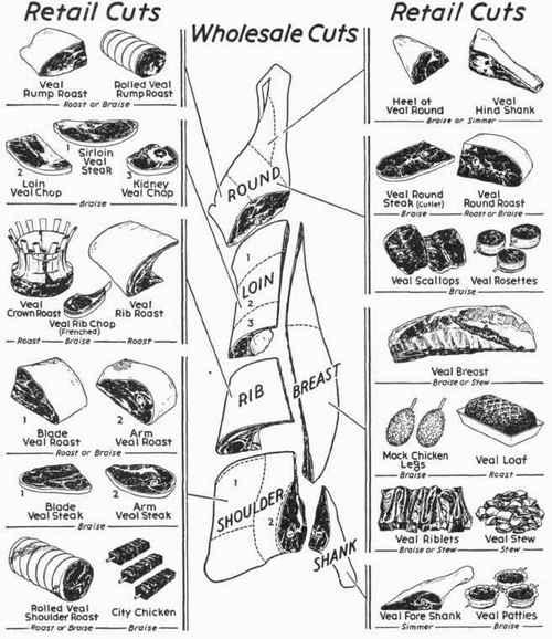 meat cuts    cook  lamb chart