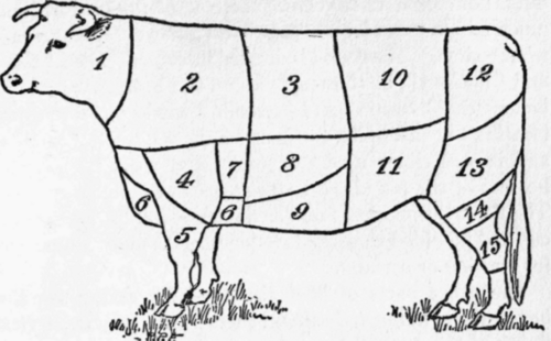 Texas de Brazil as well Primal Sub Primal And Secondary Cuts besides T0279E05 together with Faqs further 99968 Beef Grill Icons. on beef cuts of meat