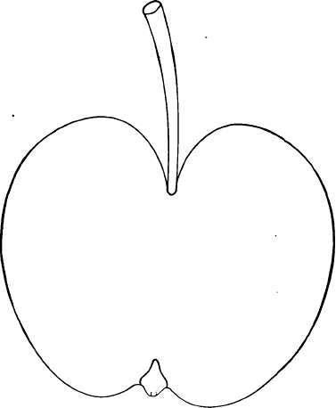 Description Of Apple Varieties E Continued