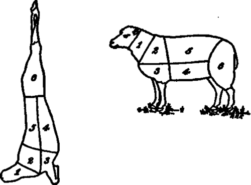 diagrams of cuts of meat from various animals