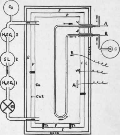 Principle Of The Atwater Rosa Benedict Respiration Calorimeters