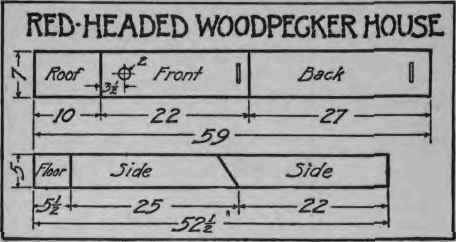 How To Make A Woodpecker House    How To Make A Woodpecker House