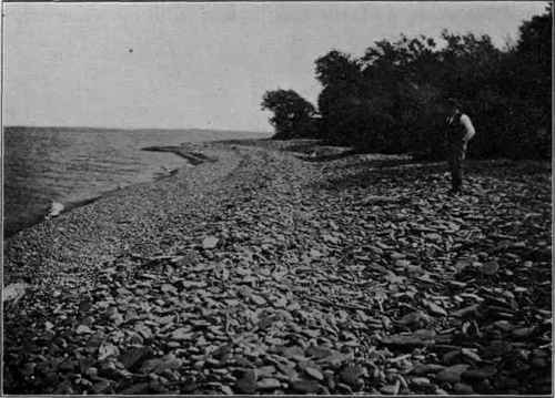an introduction and history of the lake ontario water Introduction changes in the water levels  particularly those strandlines traditionally assigned to the main stage of glacial lake  glacial lake levels and.