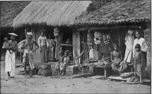 Native Life, Colombo